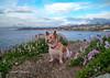 Paty y la primavera /Paty and spring (josemanuelvaquera) Tags: paty playas mar primavera spring flores flowers cielos nubes clouds heavens