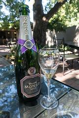 Vignoble / Winery, Villiera Monro, Stellenbosch (b-noy) Tags: afrique africa afriquedusud stellenbosch winery vignoble villieramonro vin wine