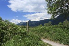 Les Grangettes (bulbocode909) Tags: vaud suisse grangettes nature printemps paysages nuages vert bleu sentiers poteaux arbres groupenuagesetciel noville
