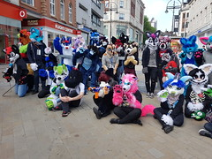 """Leeds furmeet May2018 • <a style=""""font-size:0.8em;"""" href=""""http://www.flickr.com/photos/97271265@N08/42204098802/"""" target=""""_blank"""">View on Flickr</a>"""