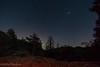 Laguna stars (borders92109) Tags: f20 12mm rokinon a6000 sony eastcounty sandiego trees afterdark sky camping laguna mountains stars night astrophotography
