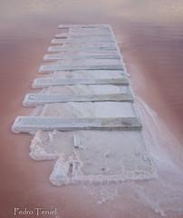 pasarela de sal (pedrojateruel) Tags: salinas de la mata torrevieja sal pasarela