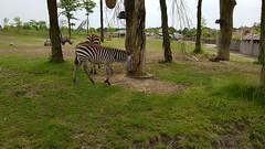 20180523_133213 (TheSlayerNL) Tags: wildlands emmen zoo dieren animals adventure wildlandsadventurezoo