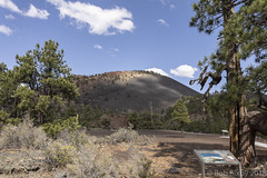 SedonaVacation_May2018-3209 (RobBixbyPhotography) Tags: arizona flagstaff sedona sunsetcrater vacation nationalmonument volcano travel