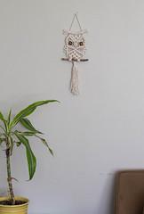 Macrame Owl (srivard72) Tags: macrame owl wallhanging decor etsy 70s retro forsale