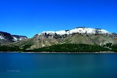 Río y Cenizas. (luisarmandooyarzun) Tags: árbol montaña cenizas fotos fotografía photographer photography agua azul paisaje cielo lake patagoniaargentina panoramapatagonia lagos