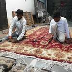 Agra 56 - carpet trimming thumbnail