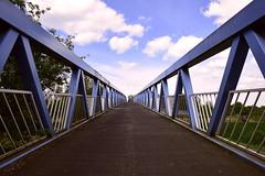 Bridge in blue (Luc.T) Tags: belgium geotagged kleinebergen rumst vlaanderen brug bridge nete