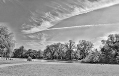 Nature is beautiful!😁☁🌞❤ (LeanneHall3 :-)) Tags: blackandwhite mono groupenuagesetciel grass lake sky skyscape clouds cloudsstormssunsetssunrises trees branches field eastpark hull kingstonuponhull landscape canon 1300d