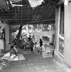 6 (Phan Hữu Lập Photography !♥!) Tags: rolleiflexautomatk4a ilfordhp5plus devlowkey18 locationlàngchuôngvietnam