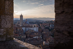 framed view of Duomo di Siena, Tuscany, Italy (Jason Clifton) Tags: canon canon5dmarkiii 5dmarkiii 5dm3 ef35mmf14lusm 35mmf14l 35mm 35mml documentary photojournalism nationalgeographic natgeo primelens nozoom noflash availablelight existinglight naturallight architecture italy jasonclifton jasoncliftonflickr flickrjasonclifton sky clouds duomodisiena duomo sienacathedral siena cathedral church landscap sunset ngc