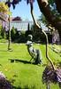 Lente @Kruidtuin Leuven (Kristel Van Loock) Tags: kruidtuin kruidtuinleuven leuvensekruidtuin lenteindekruidtuin lente2018 lente 6mei2018 spring primavera printemps spring2018 leuven louvain lovanio lovaina löwen atleuven seemyleuven visitleuven loveleuven leuveninbeeld vlaanderen vlaamsbrabant flanders fiandre flandre flemishbrabant brabantflamand brabantefiammingo visitflanders visitflemishbrabant visitbelgium leveninleuven drieduizend 3000 hortusbotanicuslovaniensis botanicalgarden jardinbotanique jardimbotanico botanischetuin botanischergarten giardinobotanico belgium belgique belgien belgië belgio belgica turismobelgio toerismevlaanderen toerismevlaamsbrabant toerismeleuven stadleuven 06052018 ortobotanico springseason springtime blauweregen wisteria beeld sculpture hetzittendemeisje kunstenaarlydiastefani zittendmeisje standbeeld statue statua