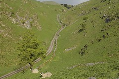 DowelDale (Tony Tooth) Tags: nikon d7100 nikkor 35mm f18g countryside landscape sheep dale derbyshiredales doweldale earlsterndale derbyshire peakdistrict road lane england