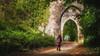 Enchantment... (Einir Wyn Leigh) Tags: landscape woodland walking child castle light green may explore pleasure wales outdoor