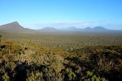 STR 110 (newnumenor) Tags: westernaustralia australia stirlingranges mountains