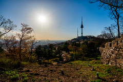 Sunset scene of N Seoul Tower at Namsan Mountain in Seoul City, South Korea. (MongkolChuewong) Tags: architecture asia asian autumn background blossom blue building business cherryblossom city cityscape dusk flower forest high hour korea korean landmark landscape mountain n namsan nature night old outdoor park public sakura seoul sky skyline south spring summer sunset tall top tourism tourist tower town travel tree twilight urban view wall