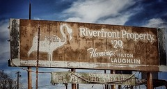 today's investment advice... (BillsExplorations) Tags: billboard sign route66 essex california abandoned decay forgotten flamingo closed hilton investment laughlin motherroad old vintage