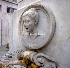 Parma (PR), 2018. (Fiore S. Barbato) Tags: italy emilia romagna emiliaromagna parma fontana