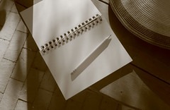 blank page (Robert Couse-Baker) Tags: 365 2018 blankpage notes notebook writing diary freshstart infrared stilllife