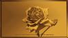 Fleur-blume-flower-fiore (MUMU.09) Tags: fleurblumeflowerfioredçiç award france