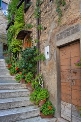 Scale con fiori (manuelfanciullacci) Tags: campiglia toscana italia italy europa europe nikond5100 provinciadilivorno li manuelfanciullacci