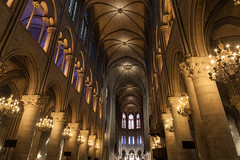 Notre-Dame de Paris (nzfisher) Tags: notredamedeparis notredame paris 24mm canon france lights vault architecture building gothic column nave chandelier arch stainedglass church iledelacité