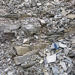 Columbus Limestone-Delaware Limestone contact (Middle Devonian; Emerald Parkway roadcut, Dublin, Ohio, USA) 1 thumbnail