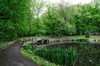 At the Park (JMS2) Tags: scenic park nature spring lake bridge walk landscape trees pathway reflections brook