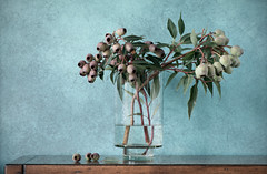 Vase of Gumnuts (glendamaree) Tags: gumnuts nature stilllife texture textured vase flowers macro