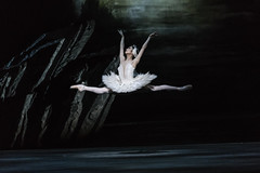 Cast change: <em>Swan Lake</em> on 22 May 2018