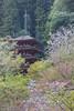 Hasedera Pagoda (Septimus Low) Tags: canon 60d 70300is travel nara kansai japan