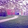 Path (Alice_argentique) Tags: filmisnotdead filmisalive filmcamera filmphotography staybrokeshootfilm hasselblad hasselblad503cx kodak ektachrome kodakektachromee100vs spring blossom