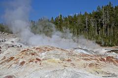 Geyser 3 (pniselba) Tags: usa estadosunidos yellowstone yellowstonenationalpark parquenacional parquenacionalyellowstone geysir geiser geyser nationalpark