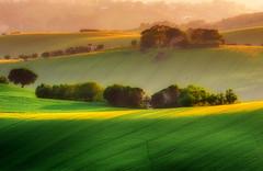 Italian Hills (emanuelezallocco) Tags: hills landscape marche italy green yellow spring light sunlight sunset last contryside paesaggi paesaggio marchigiano