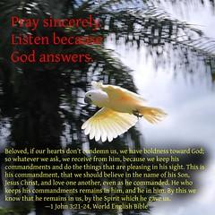 1 John 3:21-24 Cockatoo Flying (kahunapulej) Tags: pray god answers cockatoo flying 1 john 32124 world english bible