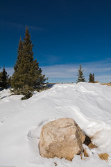 near the top (Tomás Harrison Fotos) Tags: tesuquecreektrail santafenationalforest hiking afsdxzoomnikkor1755mmf28gifed nikon d7100 aspenvista landscape apen roadtrip day availablelight spruce santafe nm snow austin tx usa ngc