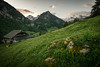 Mountain Sunrise (insepption) Tags: sunrise berneroberland swiss mountains chalet wideangle sigma1020mm nikond3300
