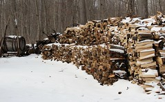 The Woodpile (Rosemary Komori) Tags: wood rural country snow winter woodpile north