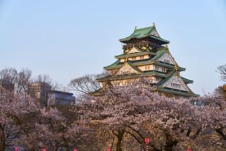 大阪城 / Osaka Castle