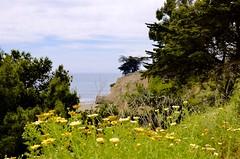 The Point (hecticskeptic) Tags: socal california santabarbara spring 2018 markamorgan
