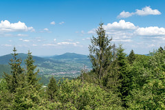 Lubon Wielki (wanna be free to fly) Tags: mountains poland beskidy nature landscape lush green high