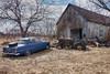 The Meeting (gabi-h) Tags: car tractor barn tree abandoned field gabih princeedwardcounty junk oldstuff rust ontario rustyroof sportycar
