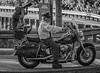 Hertiage Softtail (Southern Darlin') Tags: harleydavidson harley motorcycle people transportation bike motorbike photography photo bw blackandwhite black white monochrome mono photographer street streetphotography canon men