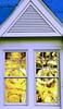 A little blue and gold. (cbonney) Tags: virginia beach oceanfront house reflection window sunrise atlantic ocean blue gold