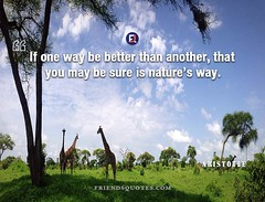 Aristotle Quote If way be better (Friends Quotes) Tags: aristotle be better greek if may nature philosopher popularauthor sure way