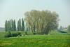 Dijk-bij-Lith (Don Pedro de Carrion de los Condes !) Tags: donpedro d700 hollands lente landschap spring uiterwaard bomengroep jonggroen uitzicht maas lameuse voorjaar