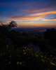 _DSC4113-4 (exceptionaleye) Tags: availablelight sandiego southerncalifornia sunset mthelix ilce7m2 variotessartfe41635 zeiss za fullframe sky clouds cloudssunset exceptionaleye sonyphotographing a7ii sony ngc