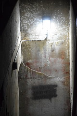 Don't go into the basement! (Bad Alley (Cat)) Tags: toronto stjamestown light stairwell grey white yellow orange spooky old night