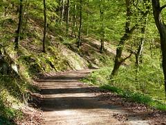 2018 Germany // Thüringen-Hessen-Rhein-Wanderweg // (maerzbecher-Deutschland zu Fuss) Tags: 2018 thüringenhessenrheinwanderweg wanderweg wandern natur deutschland germany trail wanderwege maerzbecher deutschlandzufuss hiking trekking weitwanderweg fernwanderweg deutschlandzufus r ww westerwald hessen