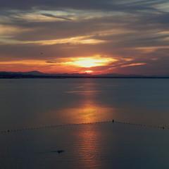 Mi Mar Menor - My Mar Menor (nuska2008) Tags: nuska2008 nanebotas atardecer sunset marmenor murcia sol nubes clouds landscape ocaso tramonto olympussz30mr reflejos nwn tranquilidad belleza sunsetreflections españa